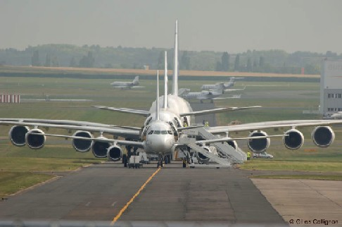 airbuslineupdsc0054eq2.jpg